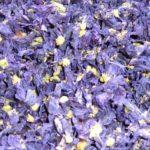 CRNI SLJEZ - Malvae sylvestris - suhi cvijet crnog sljeza