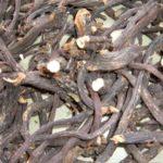 GAVEZ - Symphytum officinalis - suhi korijen gaveza